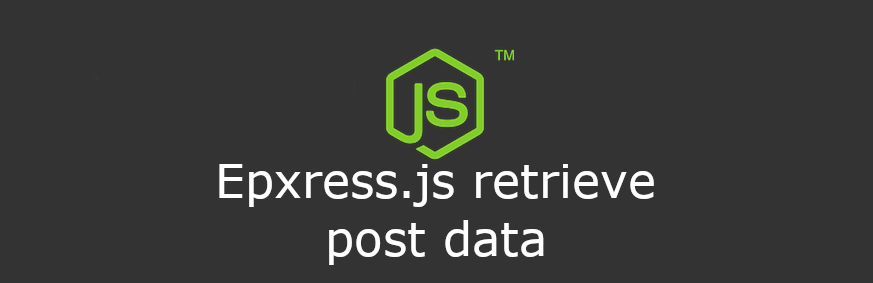 Express JS retrieve post data