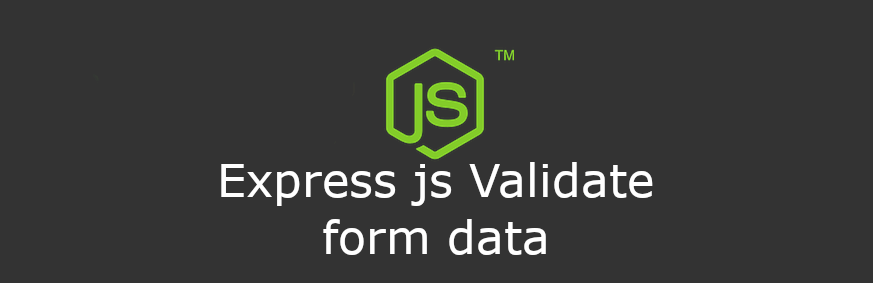 Express JS Validate form data using express-validator